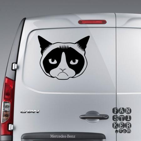 Обиженный котик Grumpy Cat